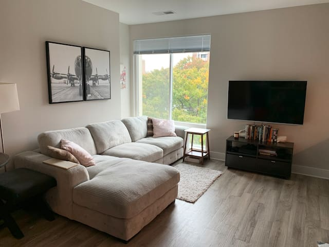 1 BR in heart of SW DC steps from District Wharf