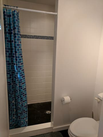 Big, spacious shower with two shower heads and amazing water pressure!