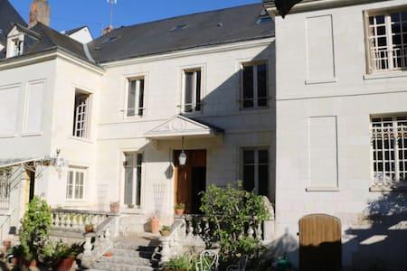 Chambres d'hôtes vue Loire et Châteaux d'Amboise - แอมบอส