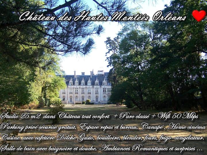 Unique Château Des Hautes Montées Charming studio