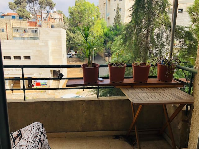 Large and comfortable Room in Rehavia