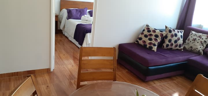 Cozy & Comfortable Apartment in Santiago Downtown
