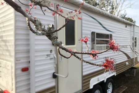 Serenity Waterfront RV, WIFI, 25 minutes to Beach