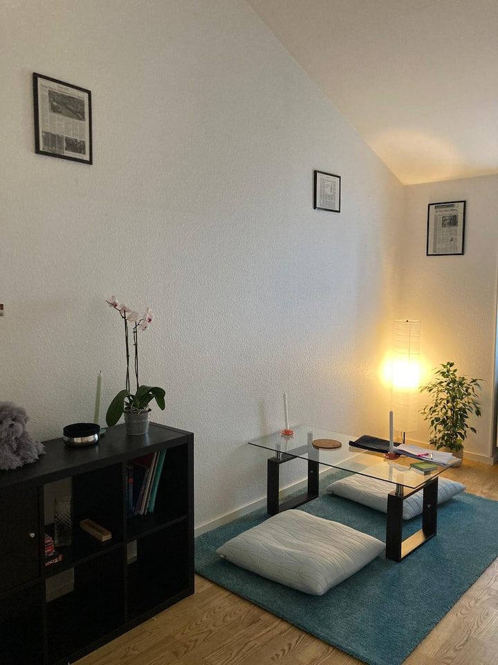 Cosy Room w/Kitchenette & Private Bathroom -Amager