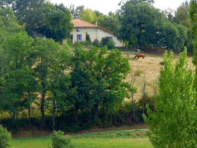 Naturix - Maillelevant - Castelnau-Picampeau - Apartmen