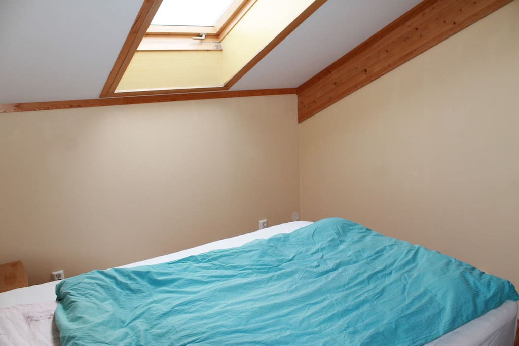 The bed room with a ceiling window
