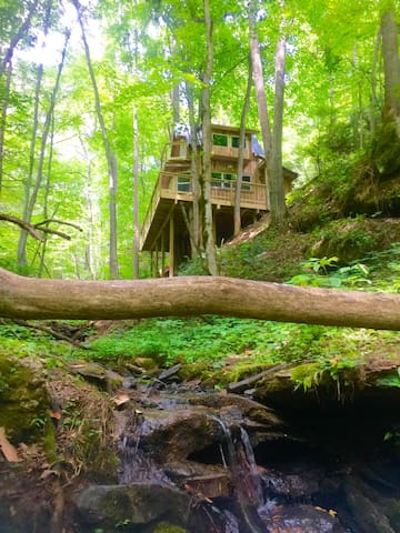 Sugar Creek Treehouse with hot tub - Green Mountain - Trädhus