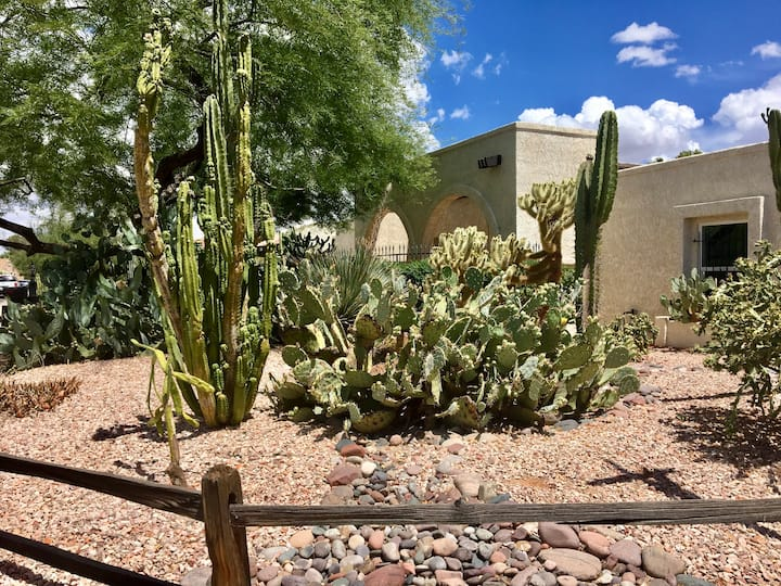 Cactus House - private place with pool in Phoenix