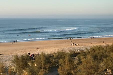 Sea, surf and sun.