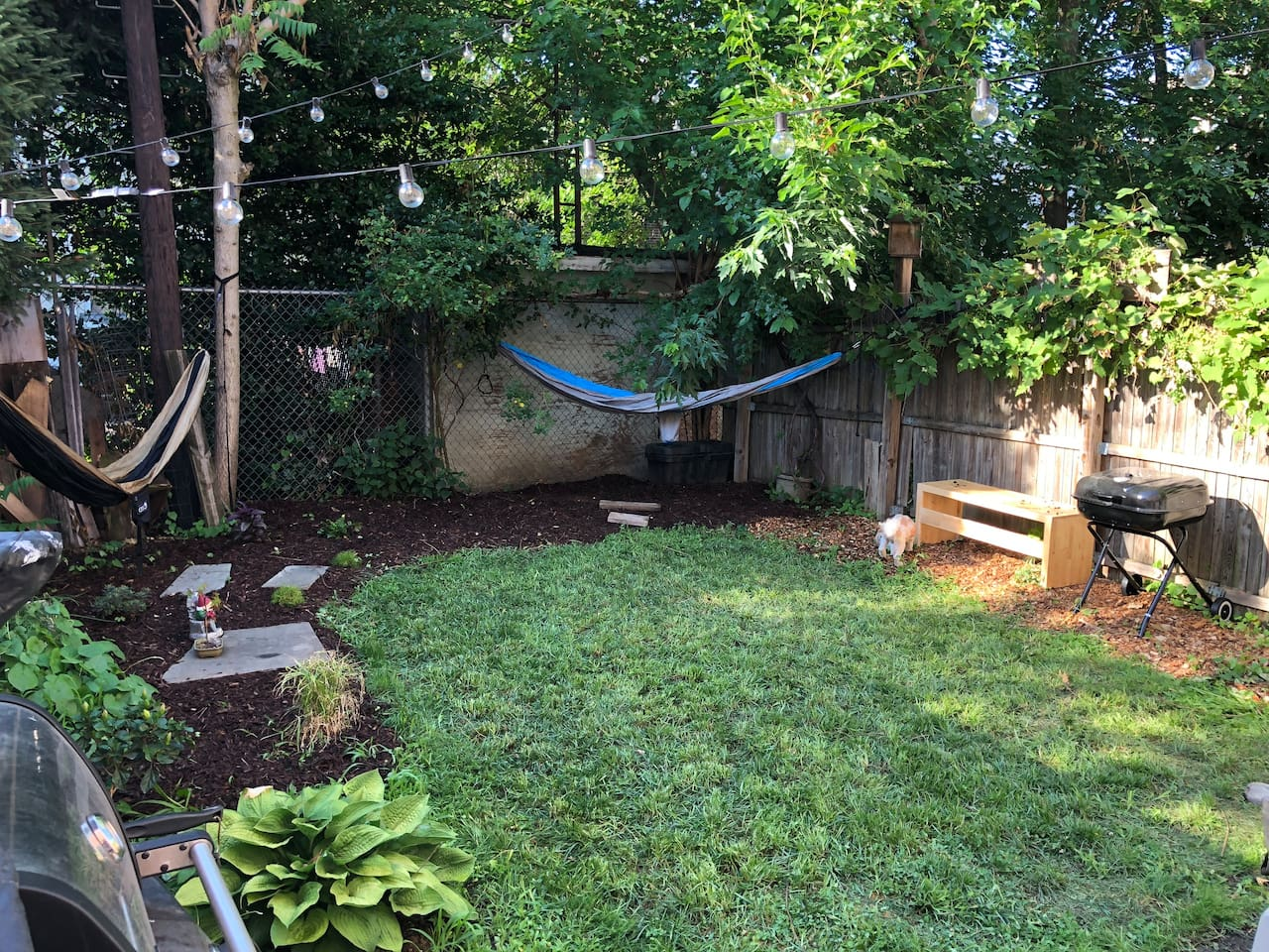 Private Backyard with BBQ and Patio (dog not included)
