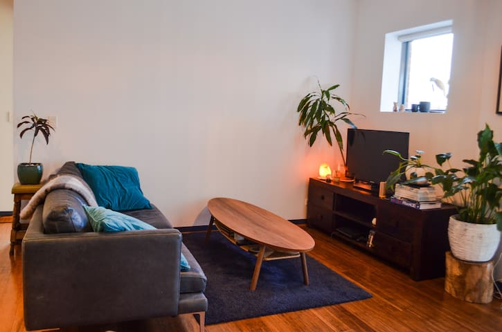 Cosy light filled 1 bedroom apartment