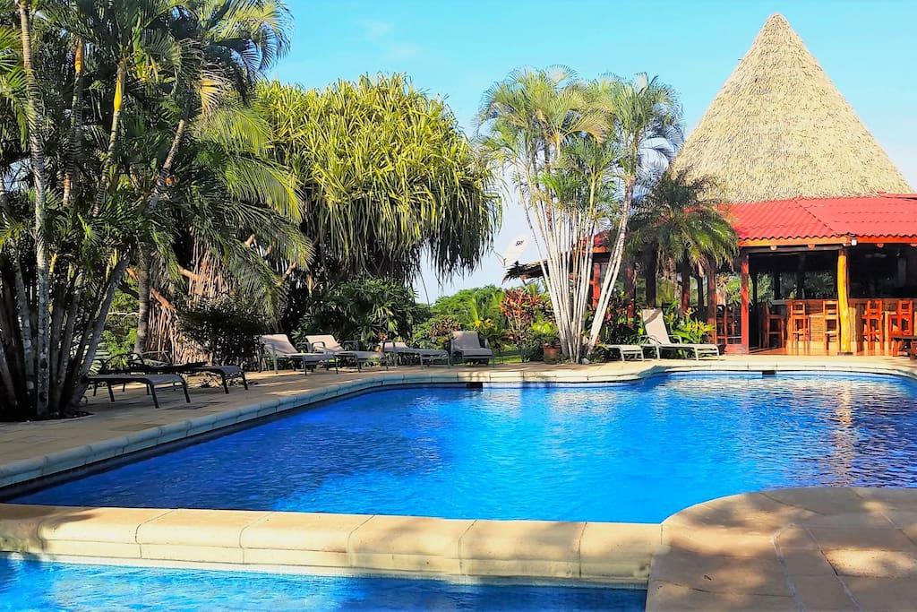 Cabina at guacamaya lodge chalet in affitto a playa for Affitto di cabina vicino a montreal