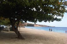 Beautiful Internationally known Grand Anse Beach