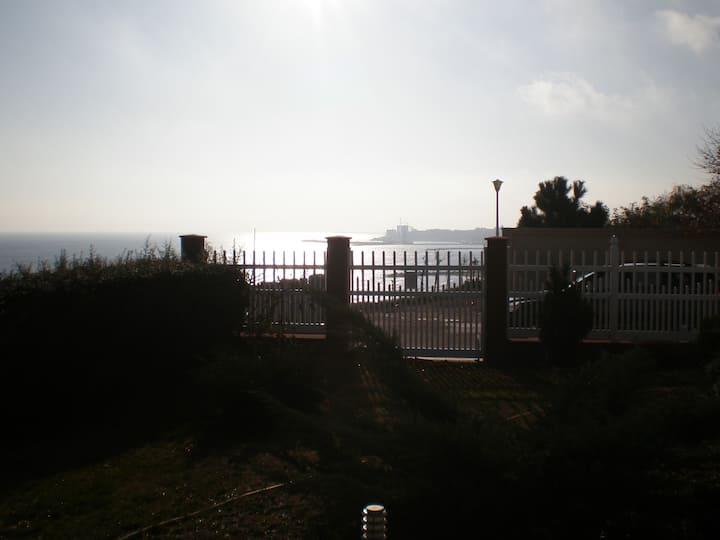 Black sea view villa