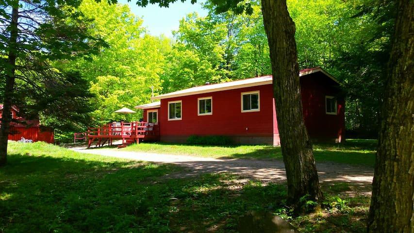 Pine Haus Cottage