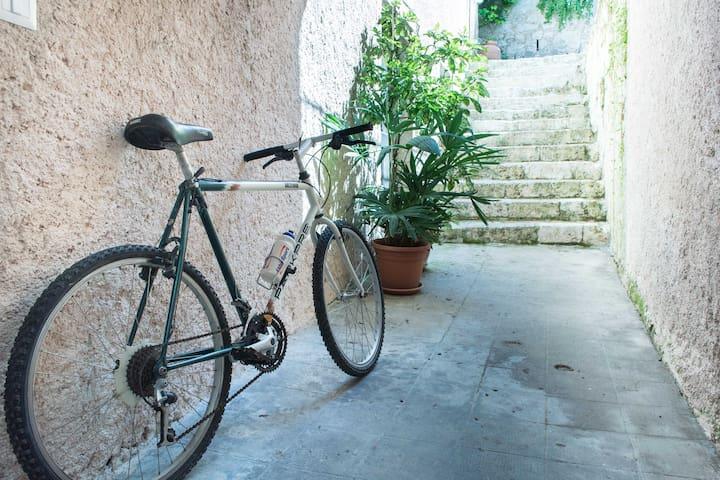 Ingresso. Possibilita' di noleggiare gratuitamente biciclette