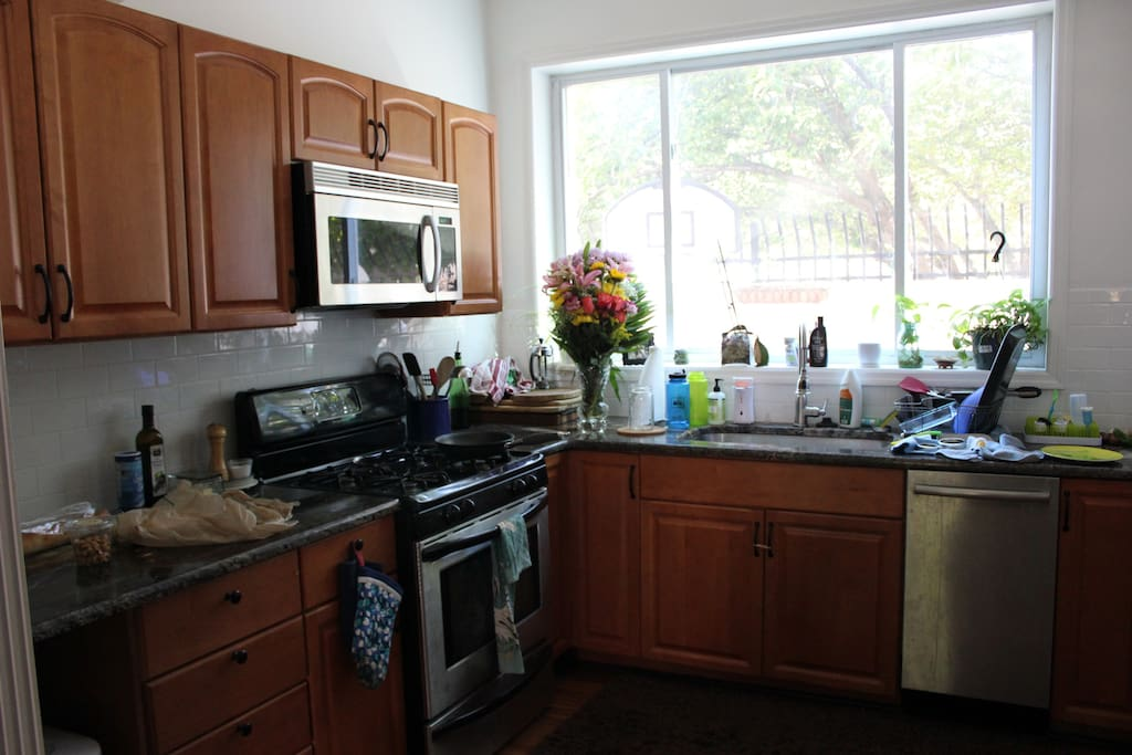 Tons of natural light in our freshly updated kitchen