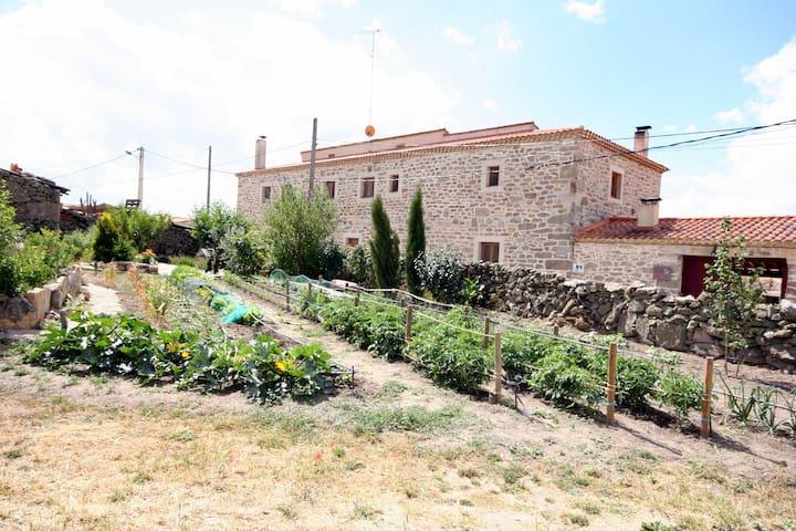 Hotel Rural La Casa del Gallo. Habitación 1 - Almeida de Sayago - Casa