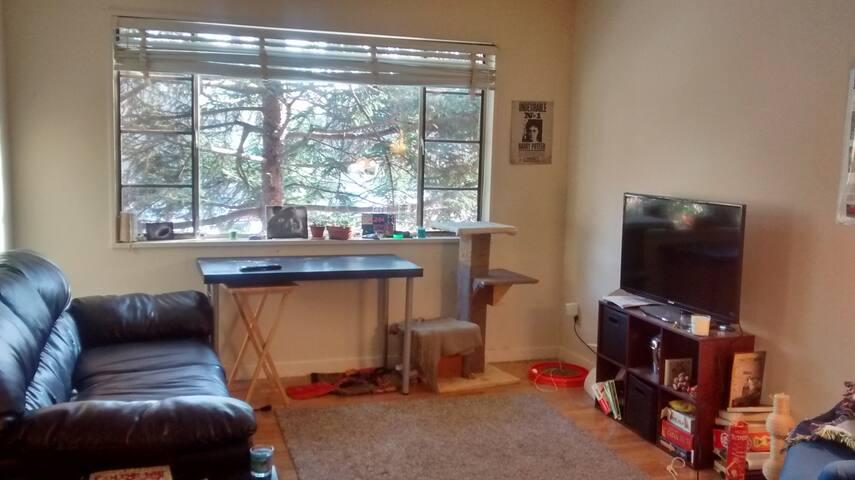 One Bedroom Apartment Near DC Metro