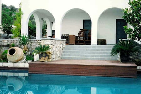 Villa Phoebe with swimming pool in Spetses, Greece - スペツェス