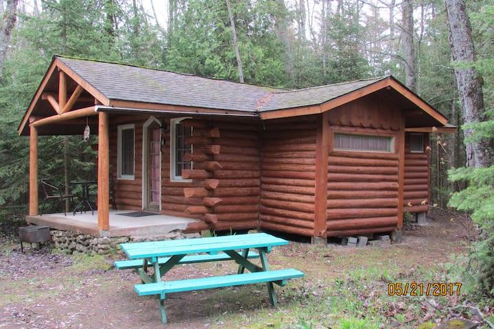 Cabin Getaway for 2