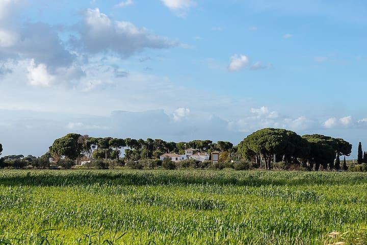 Hacienda El Corchuelo