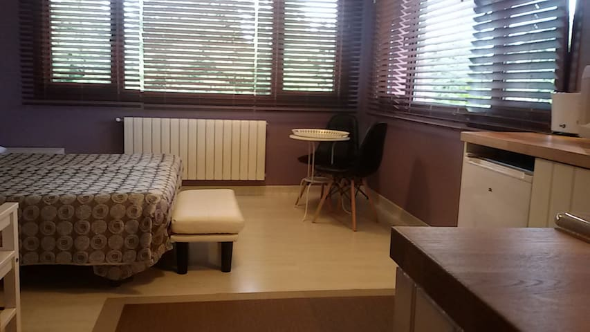 Lovely Cat's Standard Double Room