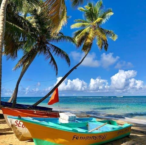 """Situé à 4 minutes à pied de la plus populaire des plages de Las Terrenas """"Playa Las Ballenas""""."""
