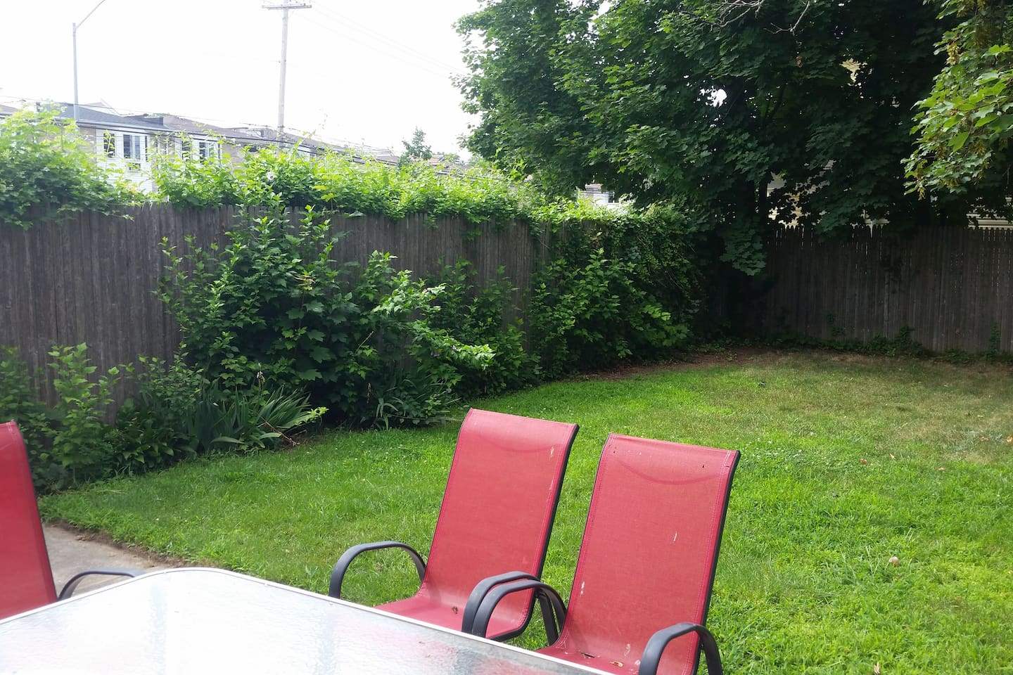 Back yard all to yourself