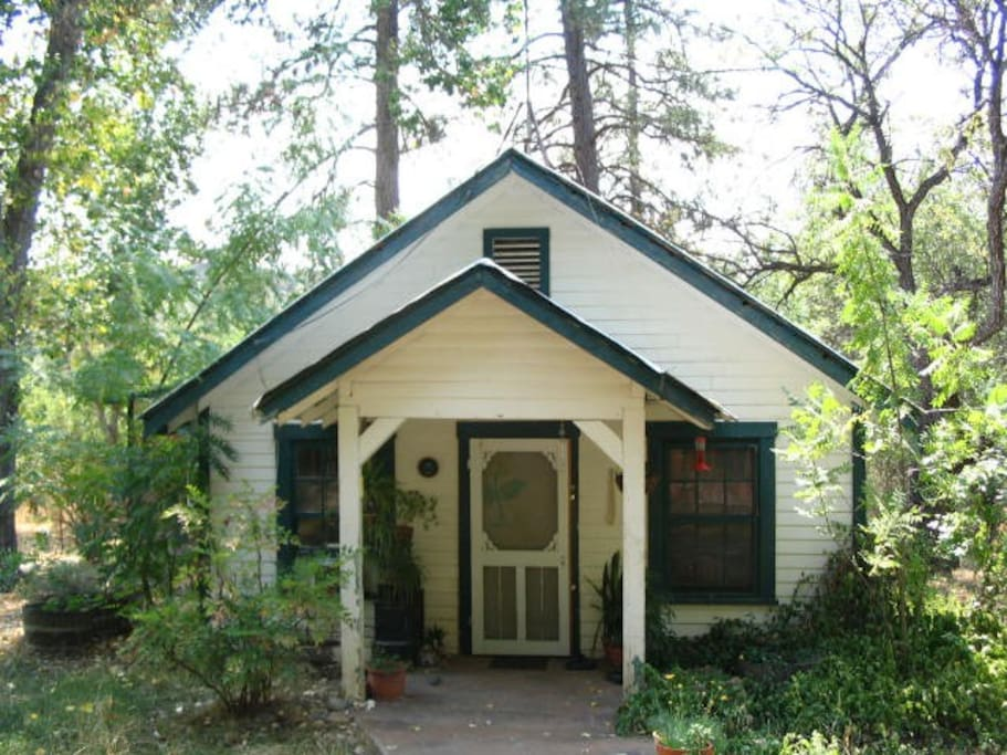 Our Cottage that you will be staying in lots  of privacy for you.