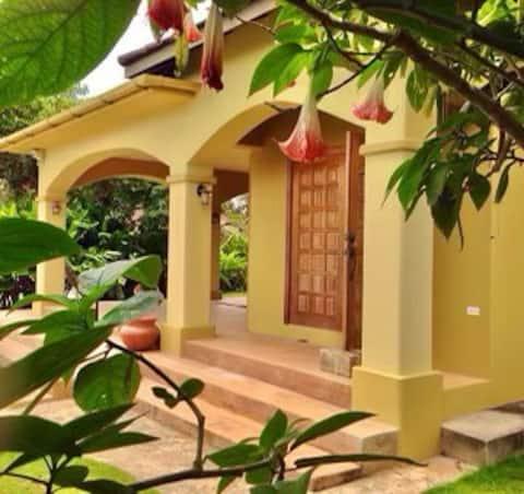 Beauty & Serenity at Kyah Place