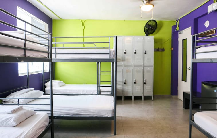 Conturce Hostel | Bed in 8- Mixed Dormitory Room