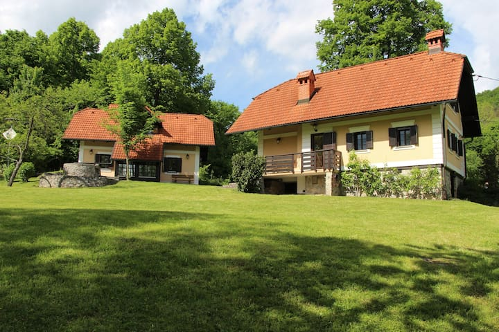 Two country houses near Ljubljana - Gradenc - Huis