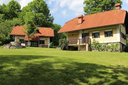 Two country houses near Ljubljana