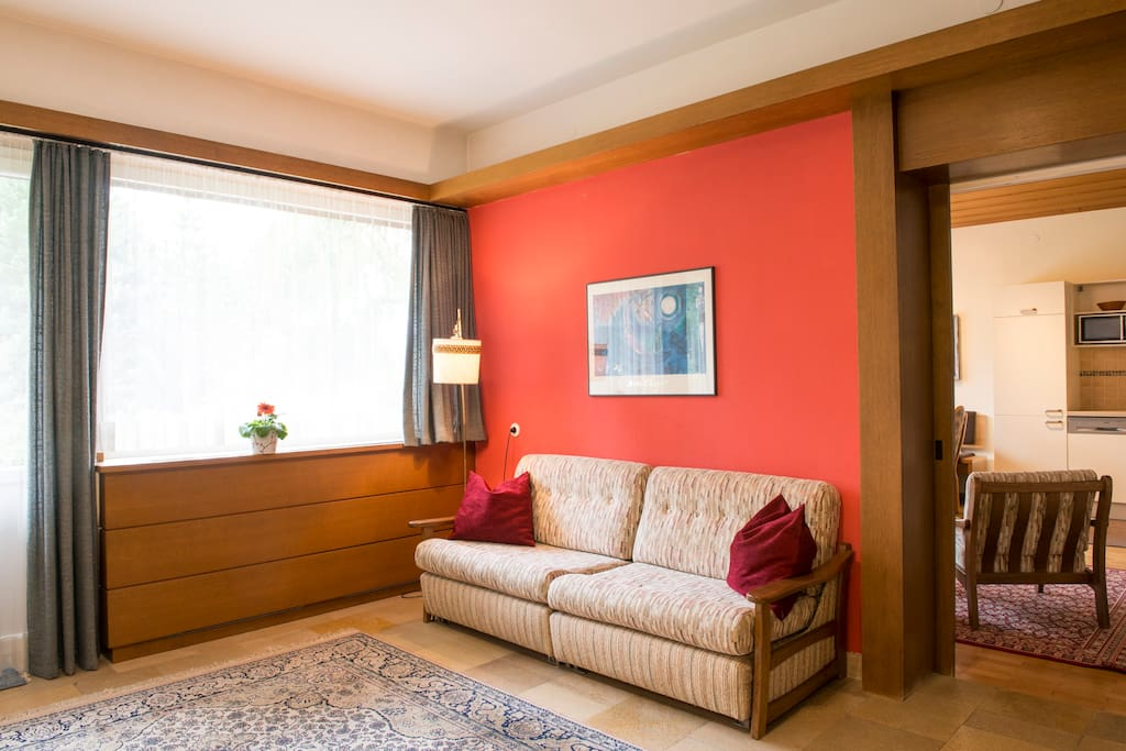 Sleeper Sofa / Ausziehbare Couch