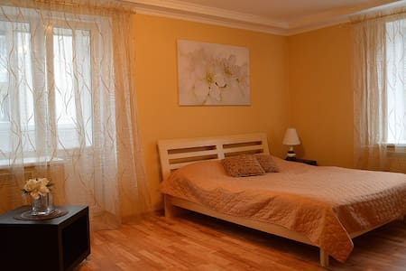 Daugavpils center square apartment - Daugavpils - Apartment
