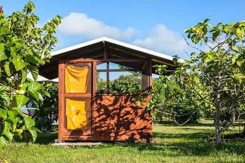 Papaya Cabin #1 for 1