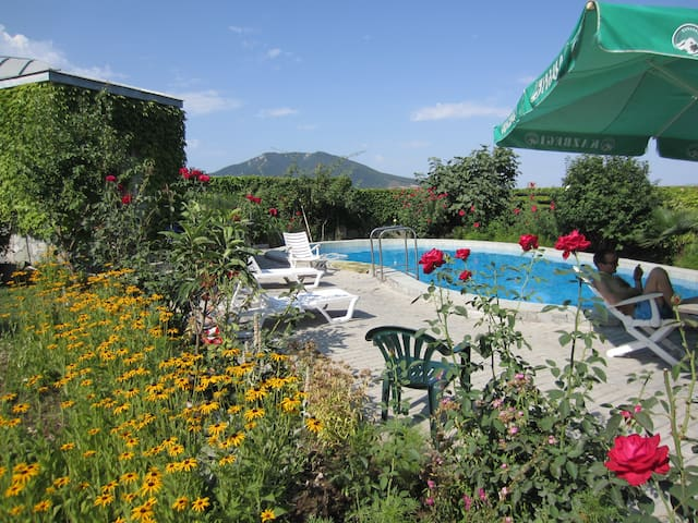 Villa with Pool near Tbilisi - Saguramo - Casa