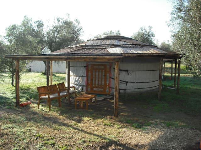 Yurta 3 posti - Canino - กระโจมทรงกลม