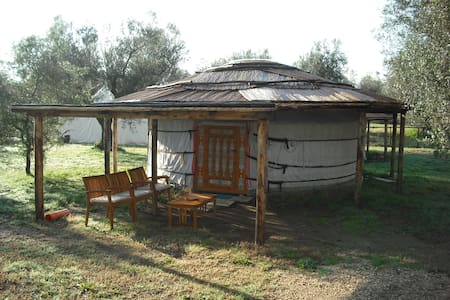 Yurta 3 posti - Canino