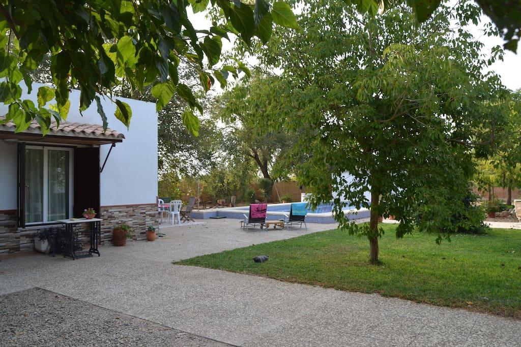 Jardín, patio y piscina al fondo