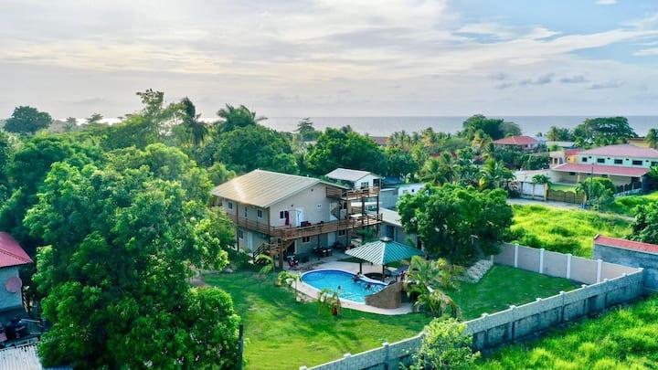 The Palm Beach House