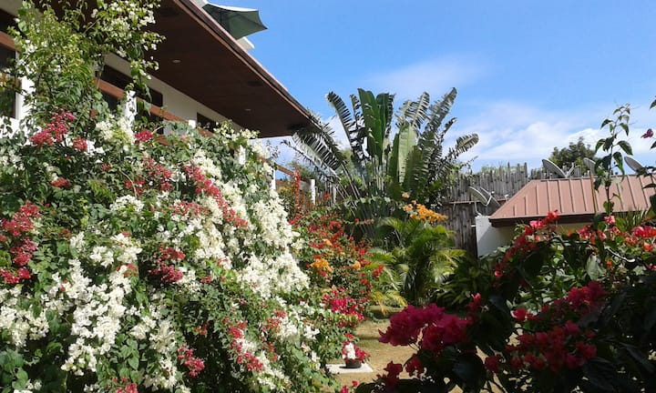 2 bed Panglao apartment-Near Beach-Pool