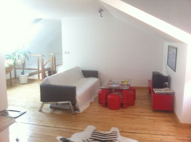 longère du 18ieme Rénovée de 200 m2 - LE LOU DU LAC - Rumah