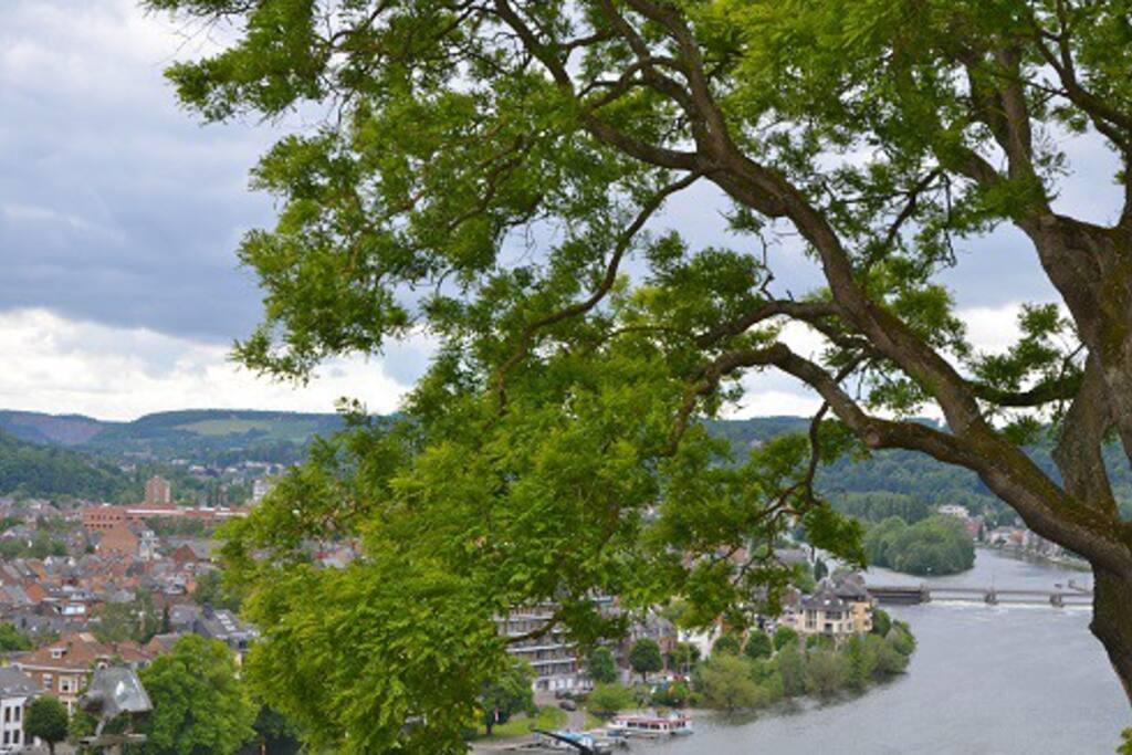 Vue de la citadelle vers la Meuse.