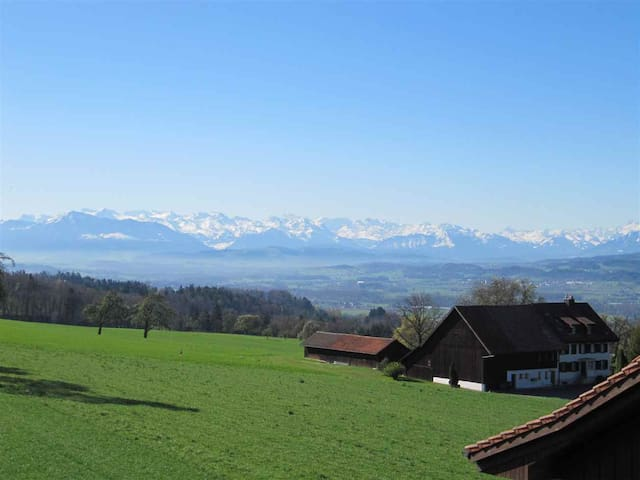 Apt for 7 with awesome view of the Swiss Alps - Oberwil-Lieli - Daire