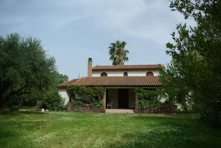 Feel good in nature