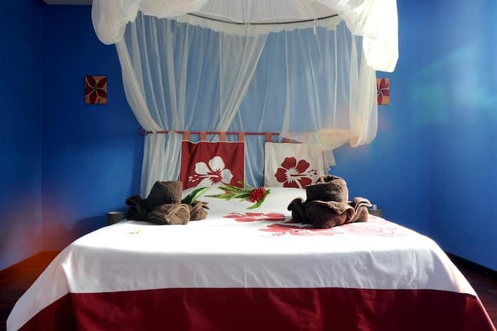 Cosy case : Coco - appartement 1 chambre