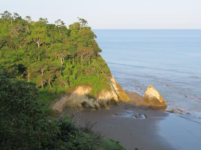 Casita Selva Oceanfront Guesthouse - Jama
