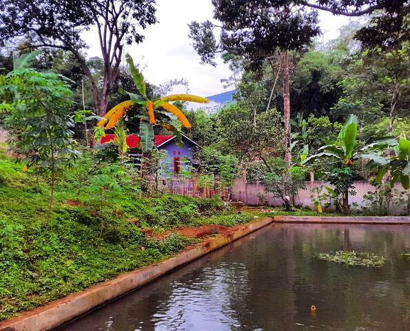 Juanda Villa nuansa Rumah Kebun